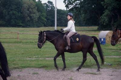 Konie - Patataj (Kanie k. Pruszkowa)