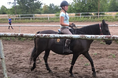 Konie - Patataj (Kanie k. Pruszkowa) / fot. KN